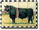 Prize Aberdeen Angus bull tiles